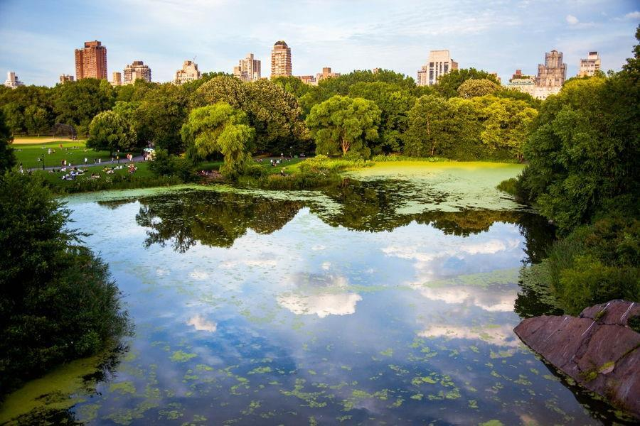 New Strategy for Re-naturing Cities through Nature-Based Solutions