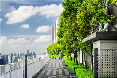 Horizon Magazine: Mobile forests could help cities cope with climate change