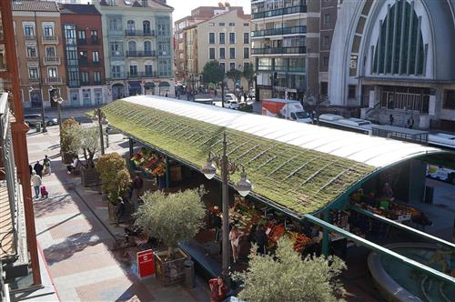 Nature will welcome you when buying fruits and vegetables in Valladolid