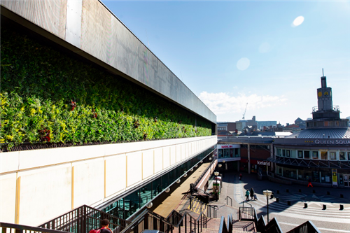 Living green wall installed in Liverpool