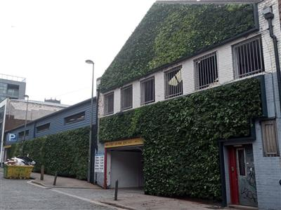 Living Green Wall on Parr Street in Liverpool